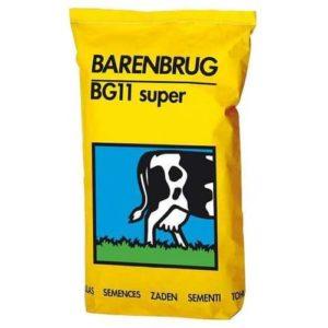 semence barenbrug prairie BG11 superplus