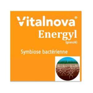 Vitalnova Energyl Granulé
