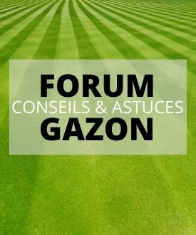 forum gazon conseil astuce