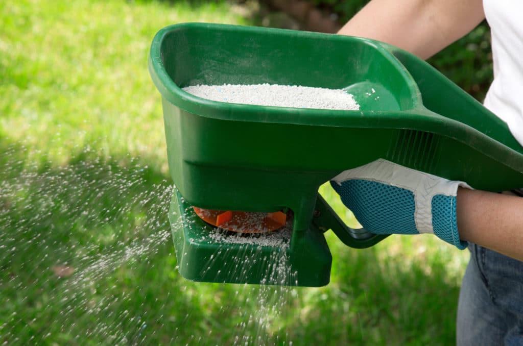 Doit-on fertiliser le gazon chaque année avec des engrais ?