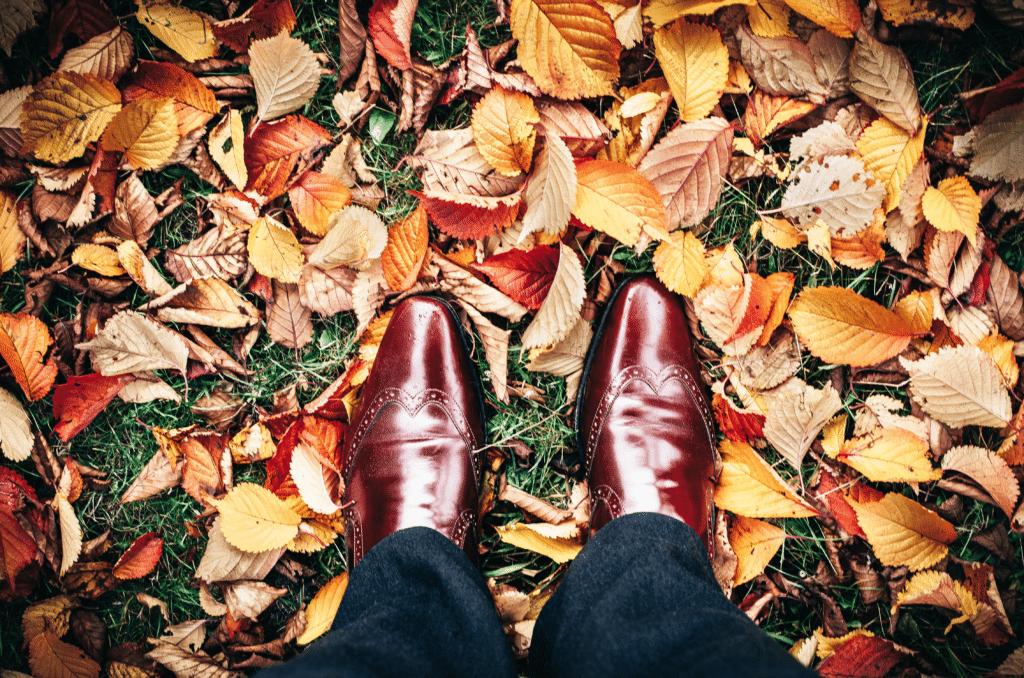 Comment entretenir son gazon en automne ?