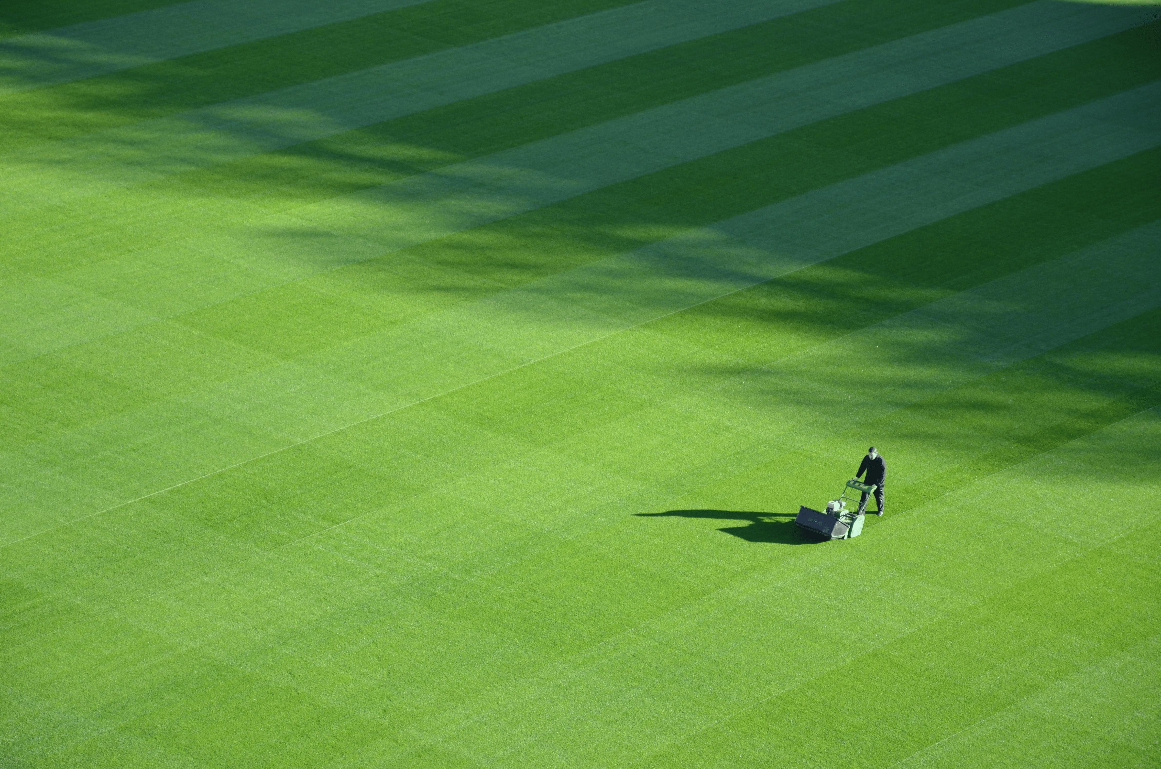 Quand et comment scarifier une pelouse ?